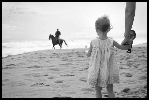 Toddler watching an approaching horse, Cabarete, Dominican Republic