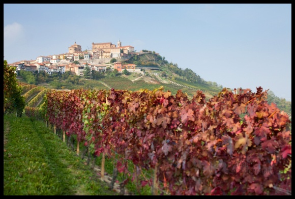 La Morra, as seen from the vineyards of Villa Carita, Italy