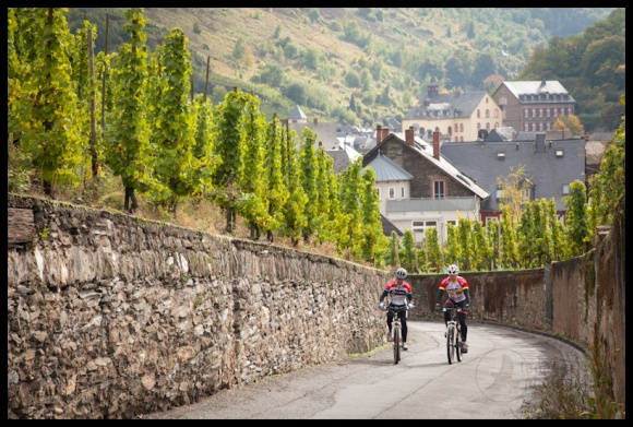 Cyclists, Bernkastel Doctor vineyard, Bernkastel-Keus, Germany